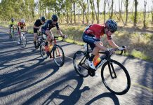Stellenbosch Cycle Tour